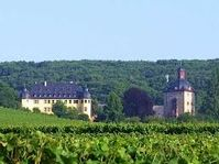 W. Blake Gray wrote about the Schloss Vollrads Winery of Germany.