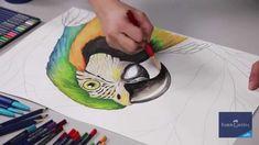 Faber-Castell - Lápices de color acuarelables Art Grip