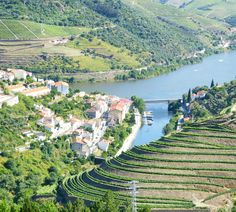A Port Wine Tour in Douro Valley, Portugal - via Why Waste Annual Leave? 01.08.2016 | A teetotaler's take and blog review of a one day Port Wine Tour from Porto to the breathtaking UNESCO listed Douro Valley Region of Portugal