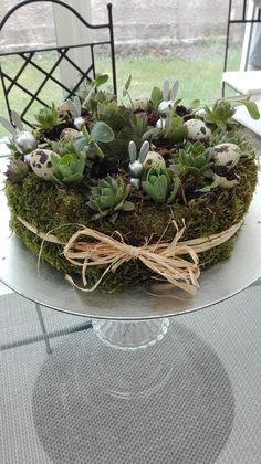 Creation Deco, Terrarium, Creations, Home Decor, Growing Succulents, Mini Gardens, Terrariums, Decoration Home, Room Decor