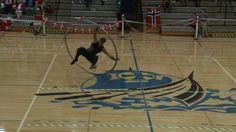 WC 2013 in Wheel Gymnastics  Cyrwheel Qualification Robert Maaser 2nd  P...