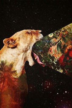 Hipsta Lion