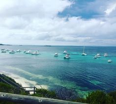 #rottnestisland #beautiful #turquoise #crystalclearwater by mer90x http://ift.tt/1L5GqLp