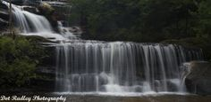 Photography tour in Wentworth Falls, Australia. This walk looks amazing!!