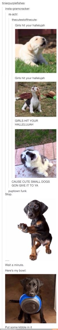 Puptown Funk This is really cute if you know the Song Uptown Funk!