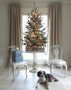 In my old house, It was easy to make a festive first impression with my holiday décor, as the front door opened directly into the...