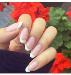 Round nails, long french nails, almond nails french, long nails, prom n Long French Nails, Almond Nails French, Nail French, Trendy Nails, Cute Nails, My Nails, French Manicure Nails, French Manicure Designs, Nagel Hacks