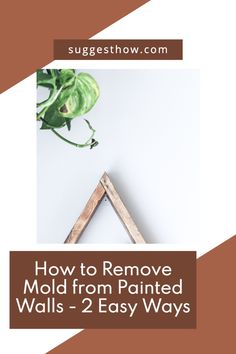 Mold on the painted wall threatens the health of your family living in the home and ruins the appearance of the wall. To restore the beauty of the wall and create a healthy home, knowing how to remove mold from painted walls is essential. Removing the mold can be an easy task if you follow some steps correctly. #DIY #cleaning #homehacks#diytips Household Cleaning Tips, Deep Cleaning Tips, Cleaning Walls, Bathroom Cleaning, Organization Hacks, Organizing, Remove Mold, Concrete Block Walls, Tidy Kitchen
