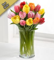 Rush of Color Assorted Tulip Bouquet with FREE Vase - 15 Stems