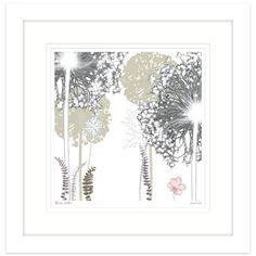 Allium Walk Framed
