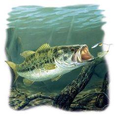 Large Mouth Bass Fish T Shirt, $14.99 White M L XL 2XL, 14.99 Gray M L XL, 16.99 Gray 2XL