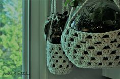 Beautful and easy succulent holder for indoor or outdoor plants. Made with butcher twine, this holder is strong and versatile. Enjoy this free pattern! Crochet Plant Hanger, Macrame Plant Holder, Macrame Plant Hangers, Plant Holders, Cotton Crochet Patterns, Knitting Patterns, Mason Jar Succulents, Small Succulent Plants, Small Mason Jars