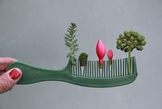 Sabine Timm - comb garden
