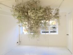 Rebecca Louise Law - Light and Dark Floral Arrangement White Flowers, Beautiful Flowers, Blue Flower Arrangements, Instalation Art, Flower Installation, Hanging Flowers, Arte Floral, Living At Home, Light In The Dark