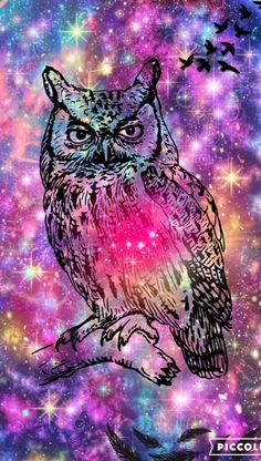 Owl colorful galaxy
