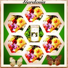 #4: Awesome smelling Gardenia Jewelry Candle! click pic to check out this and our other great jewelry candle scents!