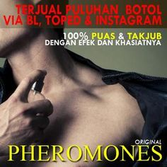 Parfum Pria Pemikat Lawan Jenis Garansi Pheoromones Original