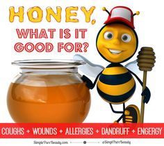 I love honey! But until recently, I didn't realize just how good, no great, that honey really is. I have used it in my Lemon Honey Mask Recipe with great results. I prefer Manuka Honey for my face as it's great for acne prone skin. But that's not all, did you know that honey is great for treating wounds, dandruff, allergies and more? Today I am sharing a fascinating article with you from Dr. Mercola all about honey and it's many uses. There are also some great honey home remedies towards ...