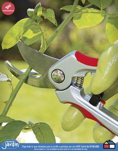 #Herramientas #Jardin jamas debe faltar de lo contrario entorpece el crecimiento Garden Tools, Gardens, Vegetable Gardening, Terrace, Tools, Green, Little Cottages, Yard Tools, Outdoor Power Equipment
