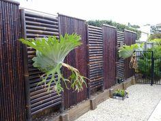 valla de bambú pintado de marrón oscuro preciosa
