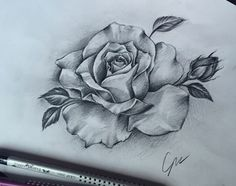 rose tattoo idea
