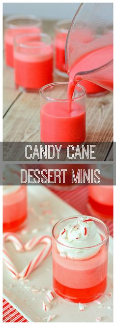 Mini Candy Cane Cups - gorgeous when set this mini candy cane cups recipe is a holiday favorite, pin for a perfectly easy and beautiful dessert recipe