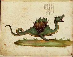 Dragon from illuminated manuscript