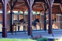 Straight From The Horse's Mouth: Tamber Bey Is A Must Stop In Napa Valley   Discover all things #NapaValley at NapaValley.com