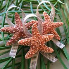 Not only do we have these beautiful sugar starfish Boutonnières, but also knobby starfish as well! Check it out!