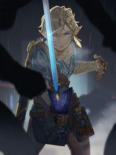 Link  LoZ Legend of Zelda  BoW