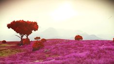 Oasis I, Portal coordinates can be found on our twitter page @StellarTech_NMS