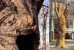 ONTARIO arte creado con árboles