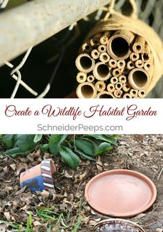 Creating a wildlife habitat garden is one the best things you can do to create balance in our garden. Learn how to create your own wildlife habitat garden.