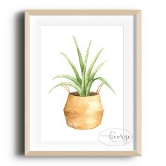 Lola & George - Aloe Vera Print Printed on quality silk card. Available in or size. Unframed - any frames and/or additional items shown in product photos not included. Plant Decor, Aloe Vera, Planter Pots, A3 Size, A5, Prints, Frames, Cards, Silk
