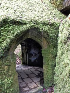 The Secret Holy Well Of Menacuddle, Cornwall And The Druid's Chair #Cornwall #Holywell