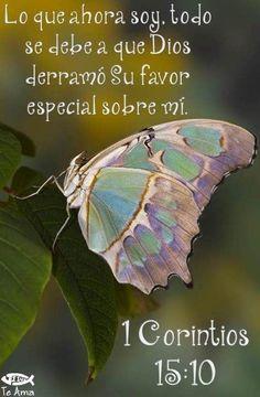 Resultado de imagen para mensajes cristianos con mariposas josue 1 :9