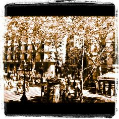 A walk along The Ramblas in Maximo Cherry's 'Barcelona 3' music video http://www.youtube.com/watch?v=q5-ARwNtCOY #barcelona #barcelona3 #maximocherry #jazz #music #jazzmusic #videoclip #musicvideo #newalbum #summer #verano #ete #estate #sommer #vacances #