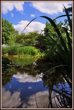 River, Outdoor, Outdoors, Outdoor Games, Outdoor Life, Rivers