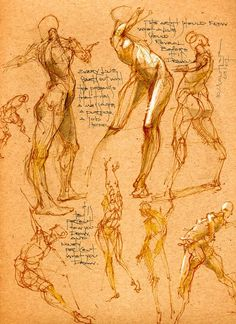 Michael Mentler uploaded this image to & Book of Bones& See the album on Photobucket. Human Anatomy Drawing, Human Body Anatomy, Human Figure Drawing, Figure Drawing Reference, Gesture Drawing, Body Drawing, Anatomy Art, Anatomy Reference, Life Drawing