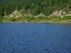 Salmon trap on Karajsjok river