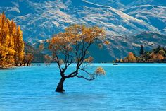 Lake Wanaka, New Zeeland