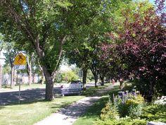 Brentwood Calgary Canada