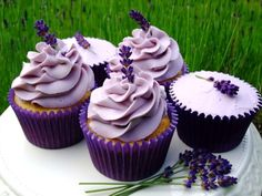 lavender frosted cupcakes