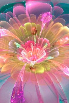 Flower Animation | Decent Image Scraps: Flower Animation