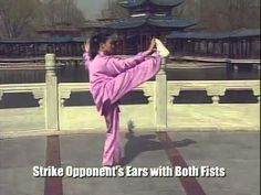 Yang Style 24, Short Form or Simplified Form. (Taijiquan) Each move explained.