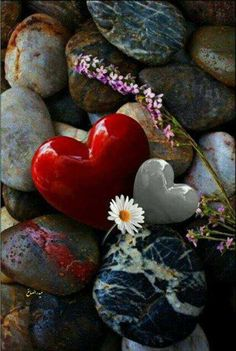 stone, heart, and nature image Stone Wallpaper, Heart Wallpaper, Colorful Wallpaper, Mobile Wallpaper, Flower Wallpaper, Beautiful Wallpaper, Cellphone Wallpaper, Beautiful Images, Heart In Nature