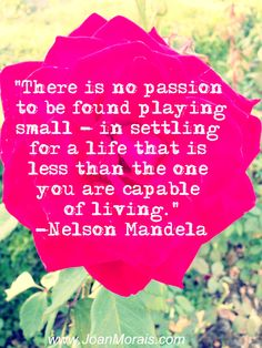 Don't settle for small.