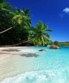 Take me here! Anse Lazio beach in Northwest of Praslin Island, Seychelles! It so beautiful! Tag a friend who you would take here!
