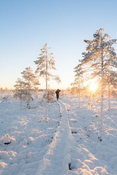 Your insider source for everything travel related: where to go, eat, sleep and play, plus what to wear while you're there. Where To Go, Finland, National Parks, Romance, Nature, Travel, Outdoor, Romance Film, Outdoors