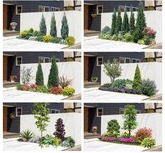 Front Yard Garden Design, Front Garden Landscape, Small Front Yard Landscaping, Privacy Landscaping, House Landscape, Landscape Plans, Small Garden Design, Yard Design, Outdoor Landscaping
